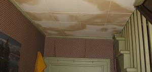 Water Damage Restoration and Mold Cleanup On Ceiling